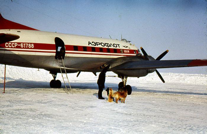Авиакатастрофа ил-14т на земле франца-иосифа. 1981