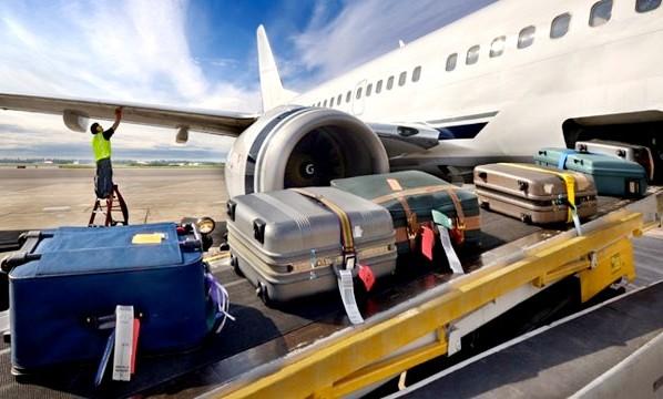Багажный отсек самолета. температура. животные. фото.