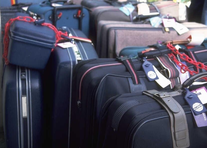 Как перевозить рыбу в самолете: показания, сопомобы перевозки, фото