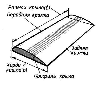 Крыло и его характеристики