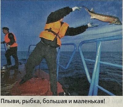 Мораторий для жизни. надолго ли в каспийском море запретят лов осетров?