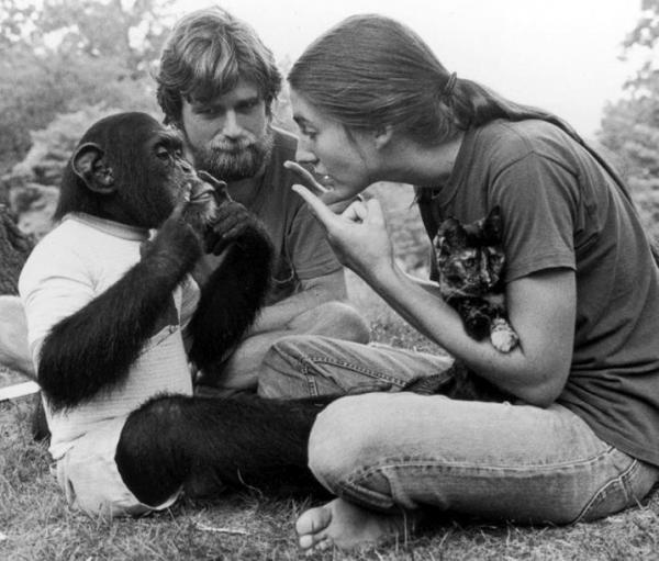 О говорящих обезьянах