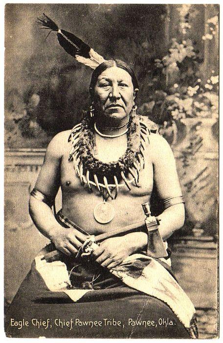 Вертолёт pawnee chief. технические характеристики. фото.